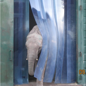 pvc strip curtains used for elephant enclosure